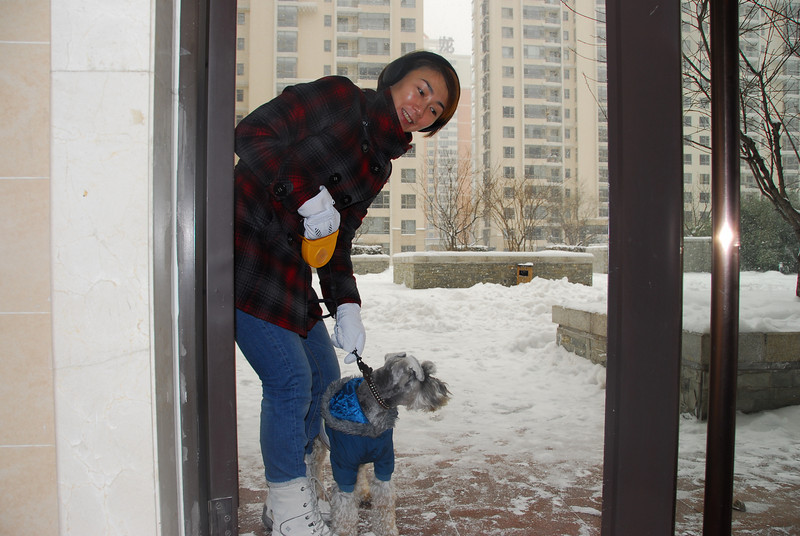 [20100103] 1st 2010 Snow in Beijing (5).JPG