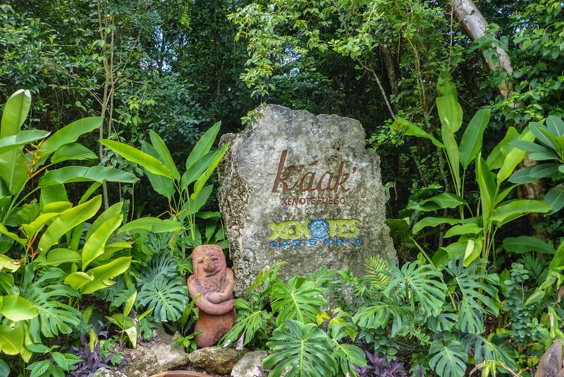 Mexicol-cenotes-7.jpg