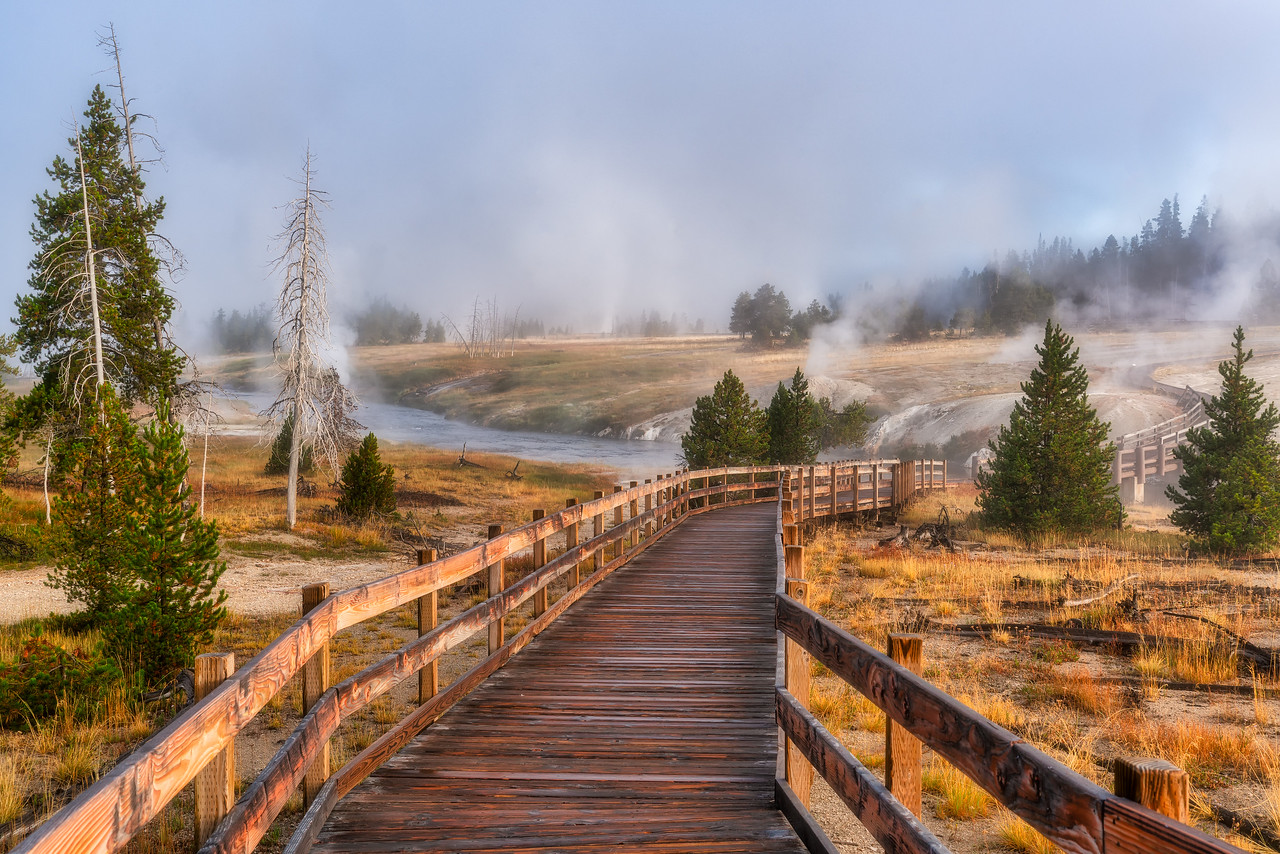 Foggy Morning in Yellowstone National Park Wyoming