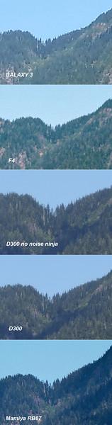 Dickerman-Mtn-100-composite.jpg
