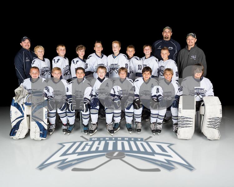2013-14 Hockey