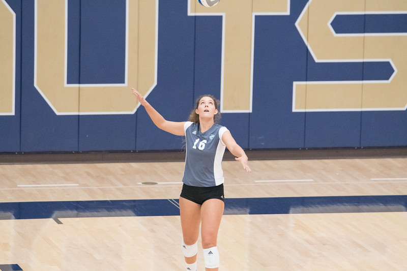 HPU Volleyball-92424.jpg