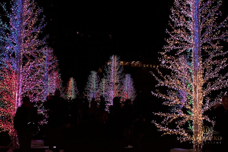 Winter Lights Festival Canary Wharf;