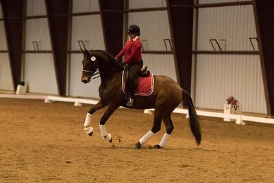 Horse 650