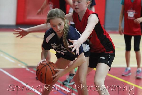 04_02_2016 QVPS vs Brooklin Village-Tournament