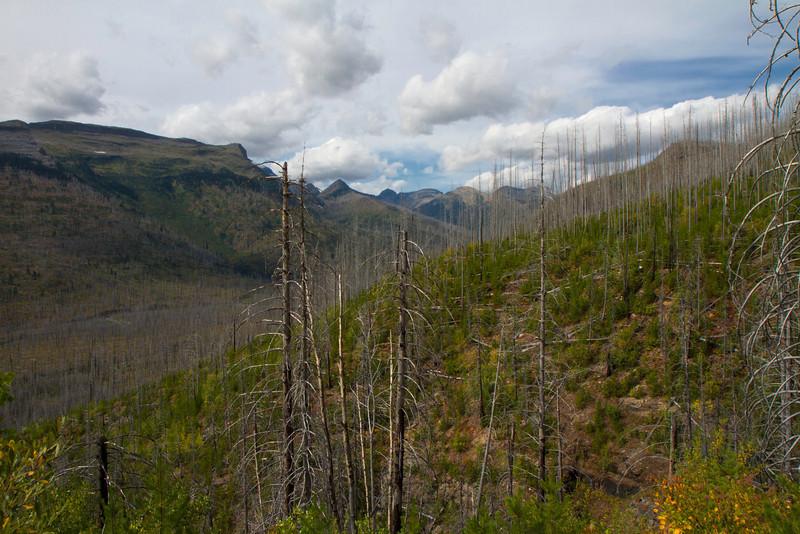 01_Glacier National Park_Montana-33.jpg