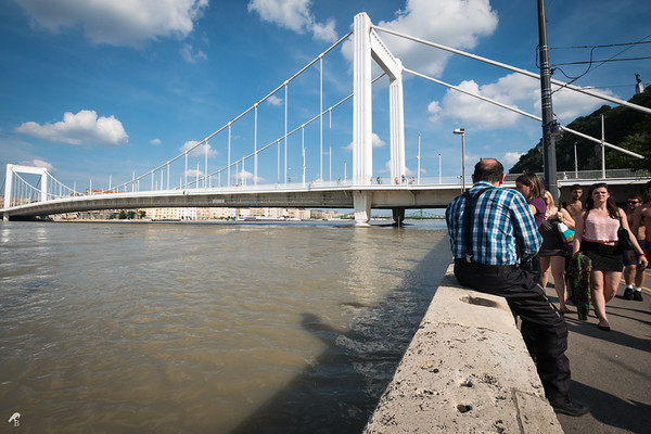 Record Flood in Hungary [2013]