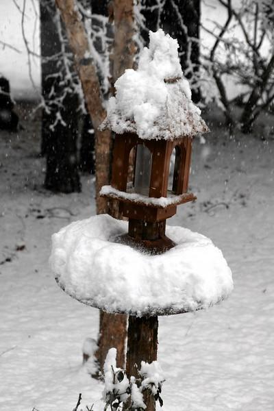 snow_o1_2018_101.jpg