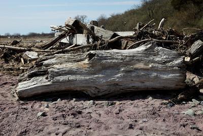 Plum Island - 04-04-2010