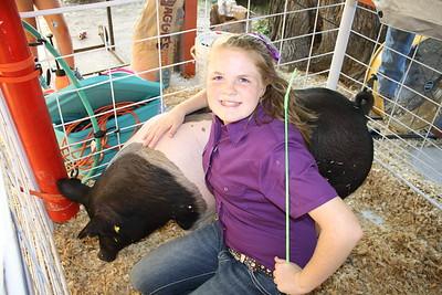 HCF 2011 Market Hog Show