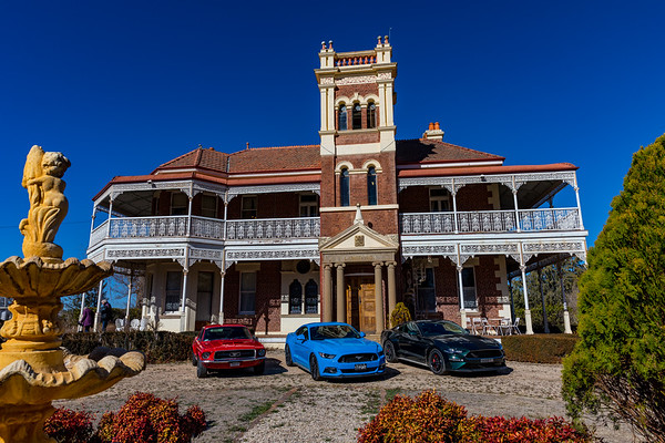Mustangs at Langford