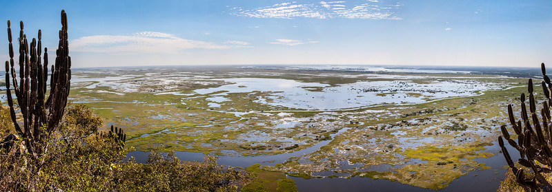 Stitched Panorama of Pantanal as seen from Amolar mountains, matogrossense national park, Pantanal, Brazil.