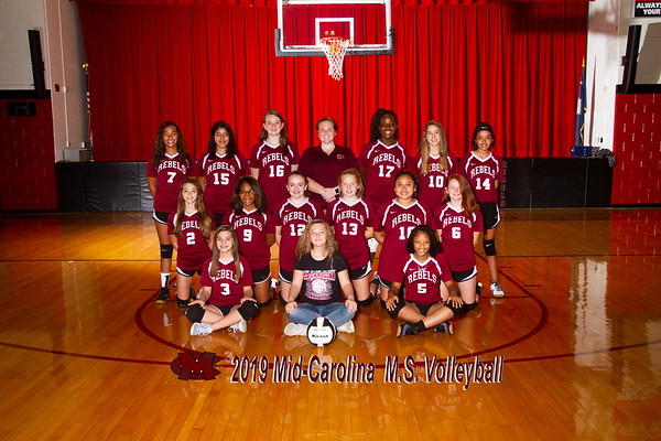 2019 Volleyball MS