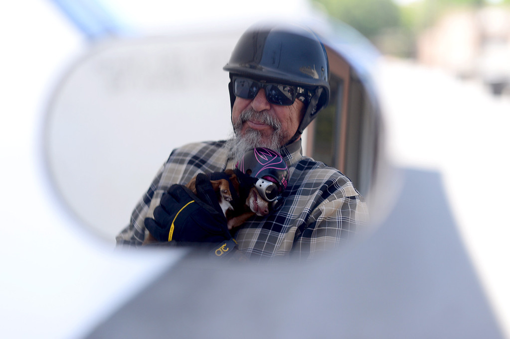 ". Freddie Padilla, 69, of Montebello, and his dog Chicle, leave Good Shepherd Family Bible Church\'s pancake breakfast Saturday, May 31, 2014. ""She sticks like gum,\"" says Padilla of why he named his dog he\'s had for five years Chicle. \""She\'s my soul mate,\"" he said. \""It\'s just her and I. She doesn\'t give orders, doesn\'t argue. I just need to teach her how to cook.\"" Padilla, who rides alone with Chicle strapped to his body and does not belong to a motorcycle club, says he had shepherds back in the day. (Photo by Sarah Reingewirtz/Pasadena Star-News)"
