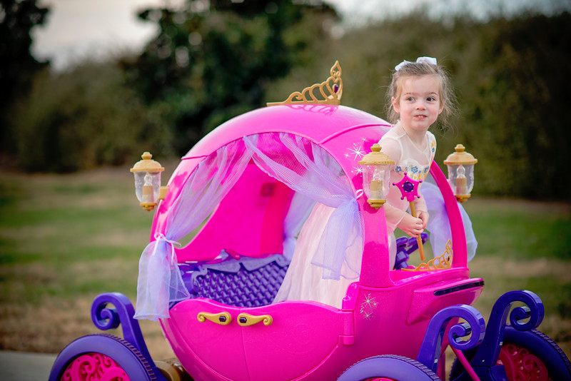 2016 Nov Daily Mom Cinderlla Carriage-2681.jpg