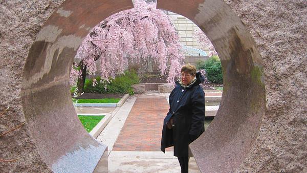 2010 Washington Cherry Blossoms