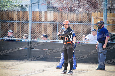 DHS Tigers Varsity Softball