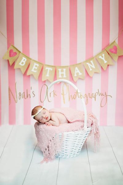 Baby Bethany | Newborn