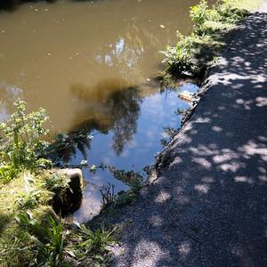 Saturday Stroll 17721 Woodley to Marple