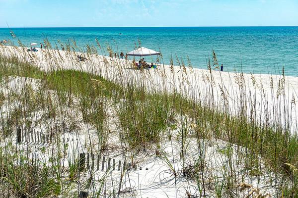 Florida Explorations!