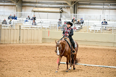 Select Western Riding