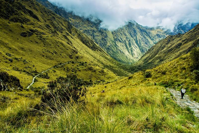 Lush green mountains in Peru