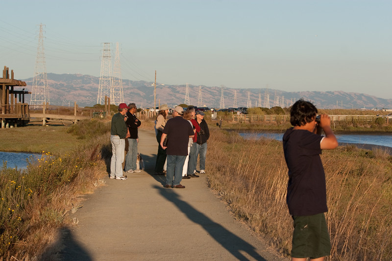 There are good walking paths that wander through this area of Palo Alto next to the airport.