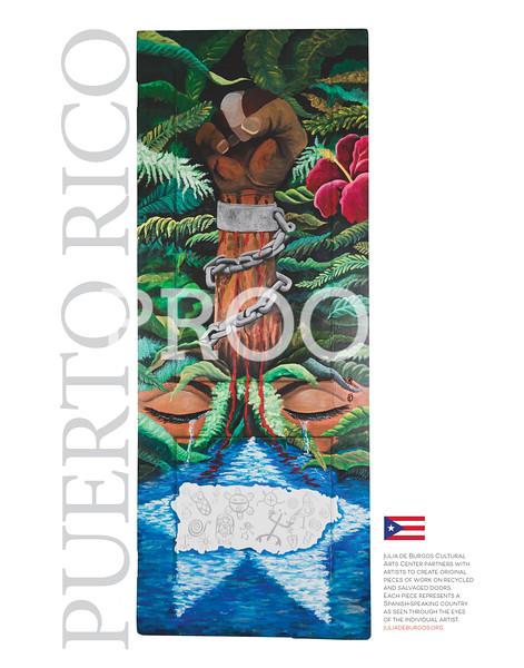 doors11x14_puertorico