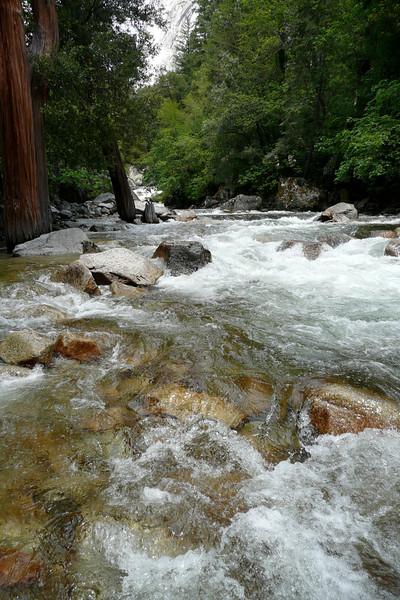 Mirror Lake Trail. Yosemite NP