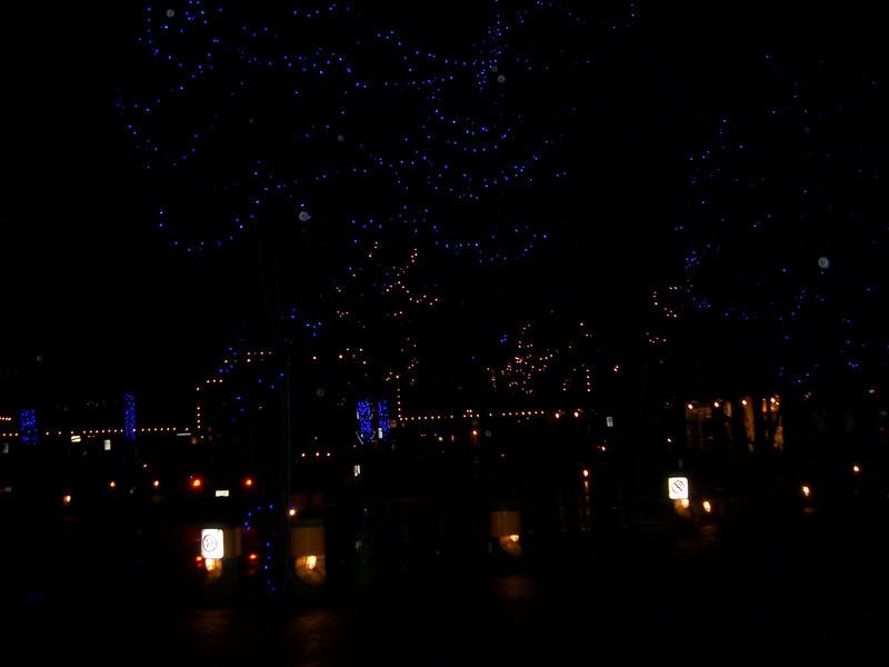 Cool blue Christmas lights.