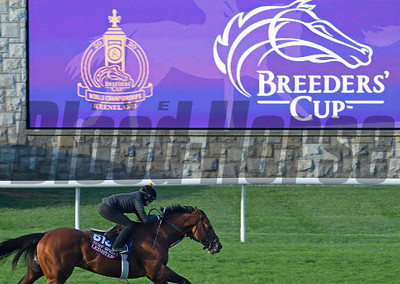 2020 Breeders' Cup