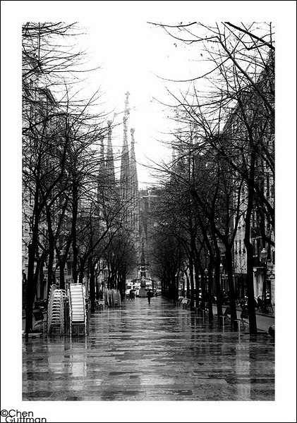 25-01-2010_16-45-38-2.jpg