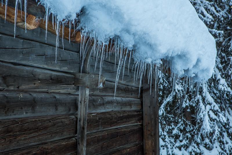 Rheinwald-Winter-D-Aebli-060.jpg