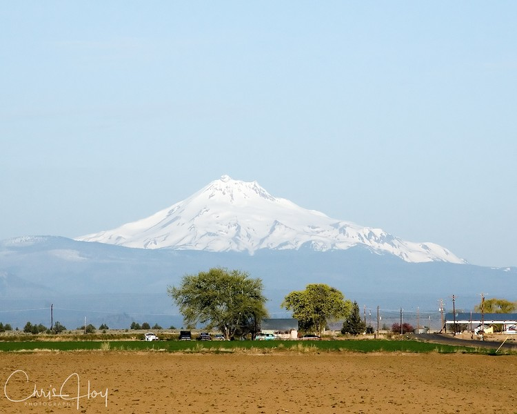 Mt. Jefferson as seen from Madras, Oregon.