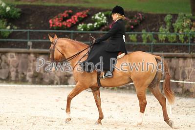 Ladies Hunter Side Saddle Under Saddle