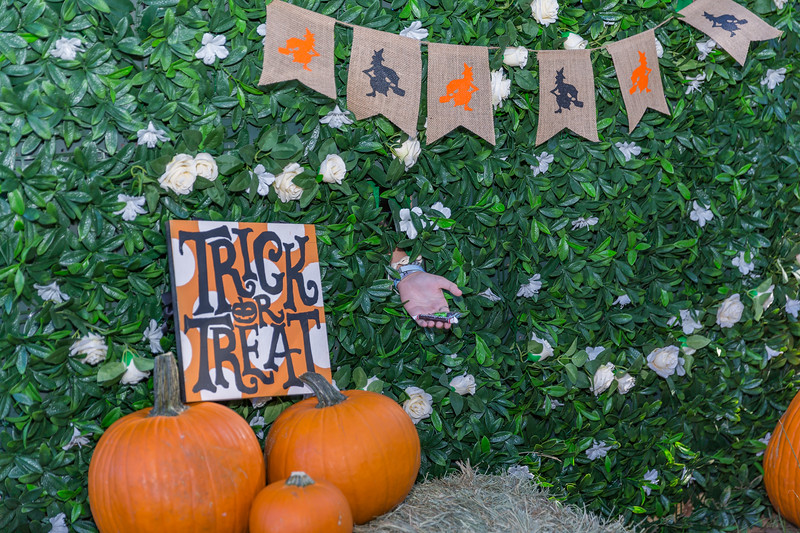 Trot or Treat 10-2019