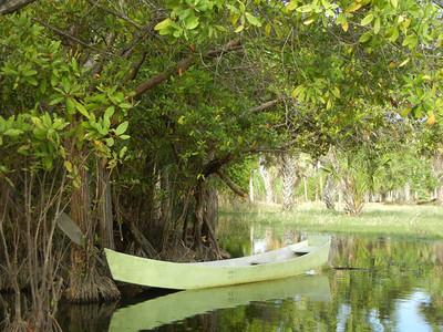Laguna de Manialtepec, Oaxaca