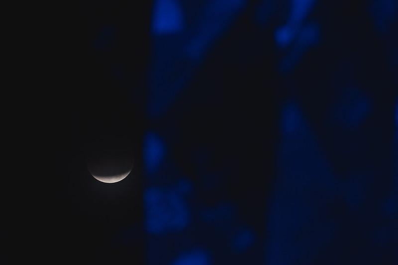 2018_0131-Moon-8040.jpg