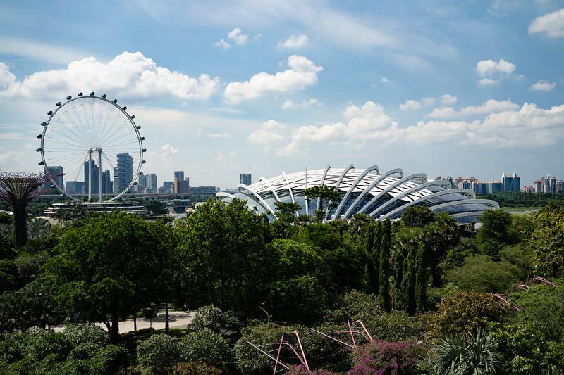 Singapore-19-060.jpg