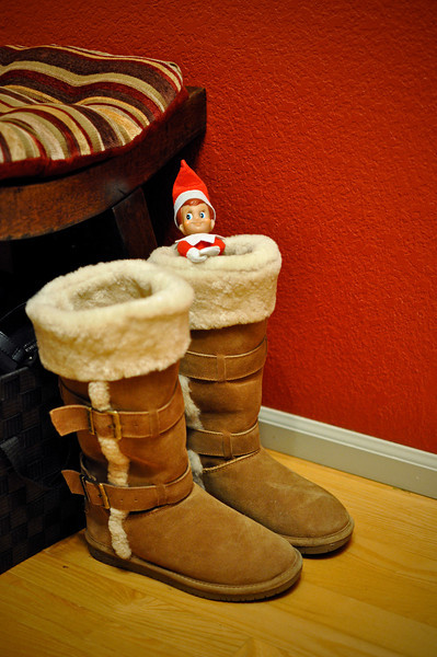 Still feeling chilly, Ellken hangs out in Whitney's comfy winter boots on day 18