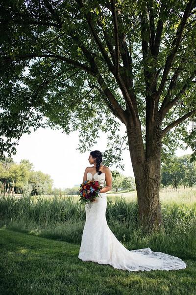 LeCapeWeddings Chicago Photographer - Renu and Ryan - Hilton Oakbrook Hills Indian Wedding -  258.jpg