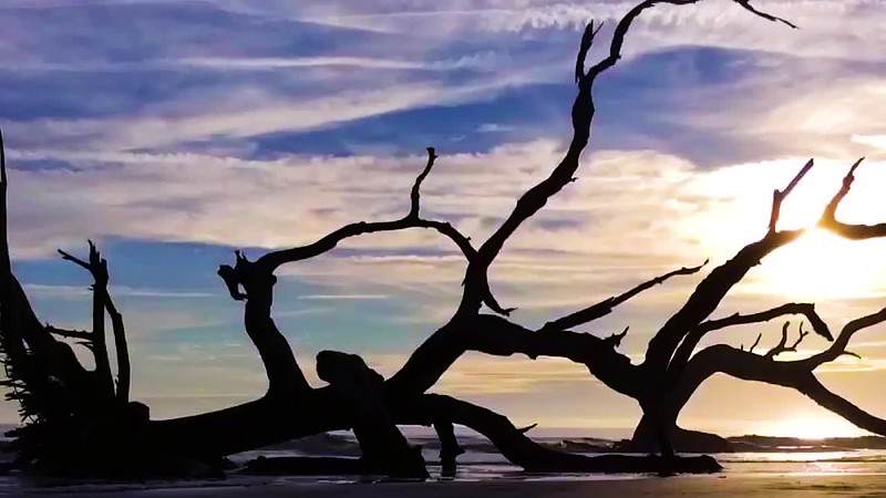 Driftwood Beach - Time Lapse