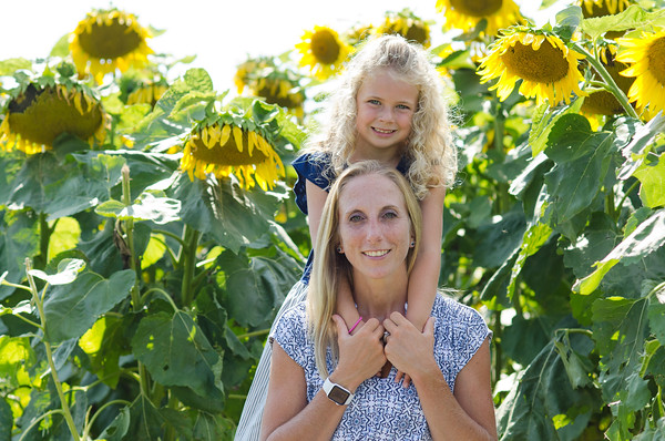 Gridley Sunflowers