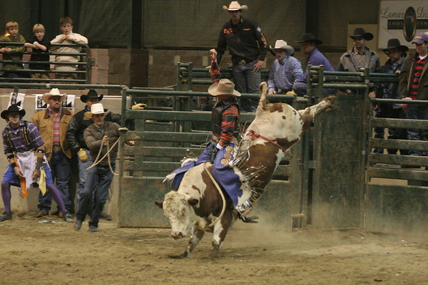 Tri-State Rodeo Bulls 02/04/2006