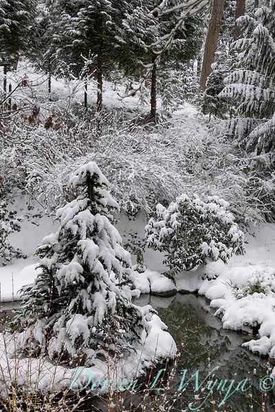 Winter wonderland_8827.jpg