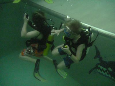 Dykking på Nemo