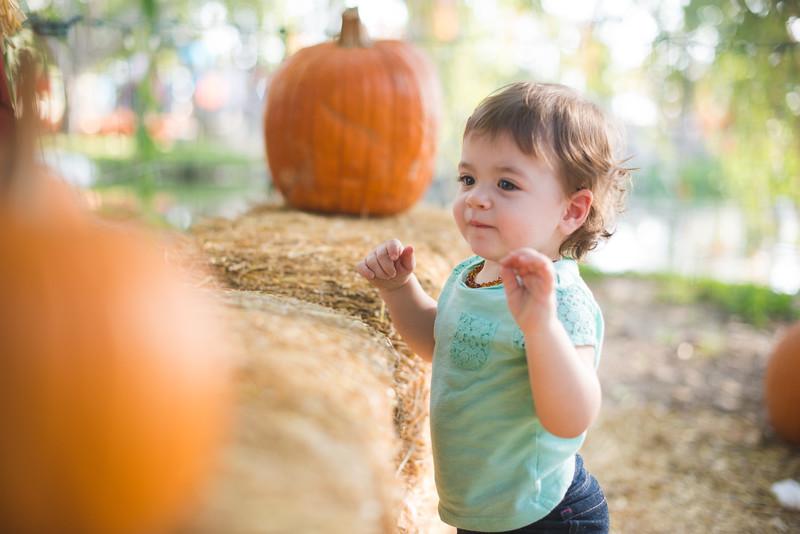 Stevies First Pumpkins-4531.jpg