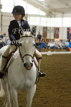 WNEPHA Equitation Final 10/13/2013