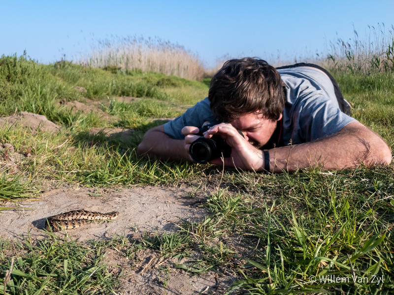 20190927 Snake Photography with Byron, Craig, and Kyle