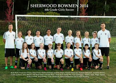Soccer 2014